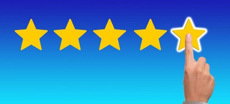 Feedback stars