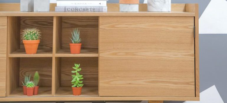 Furniture, cupboard and drawers with plants in them