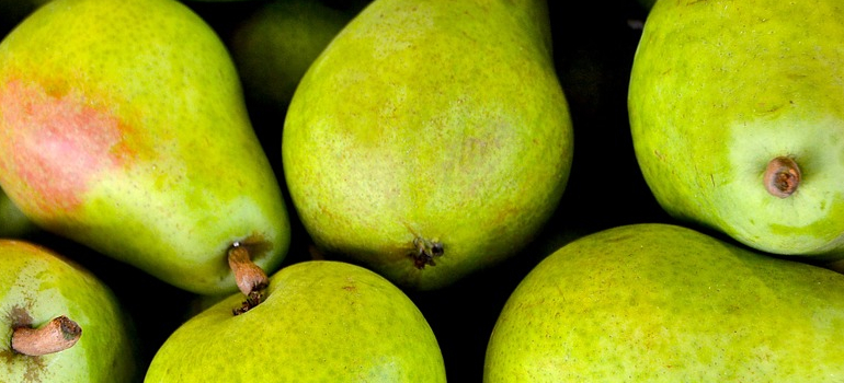 fruit as one of the items you shouldn't store away